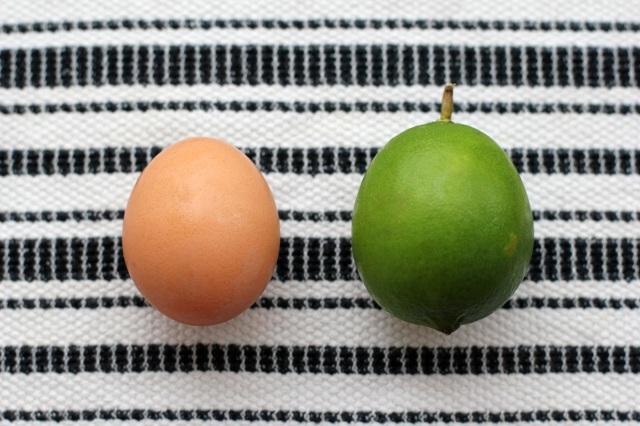 egg & lime