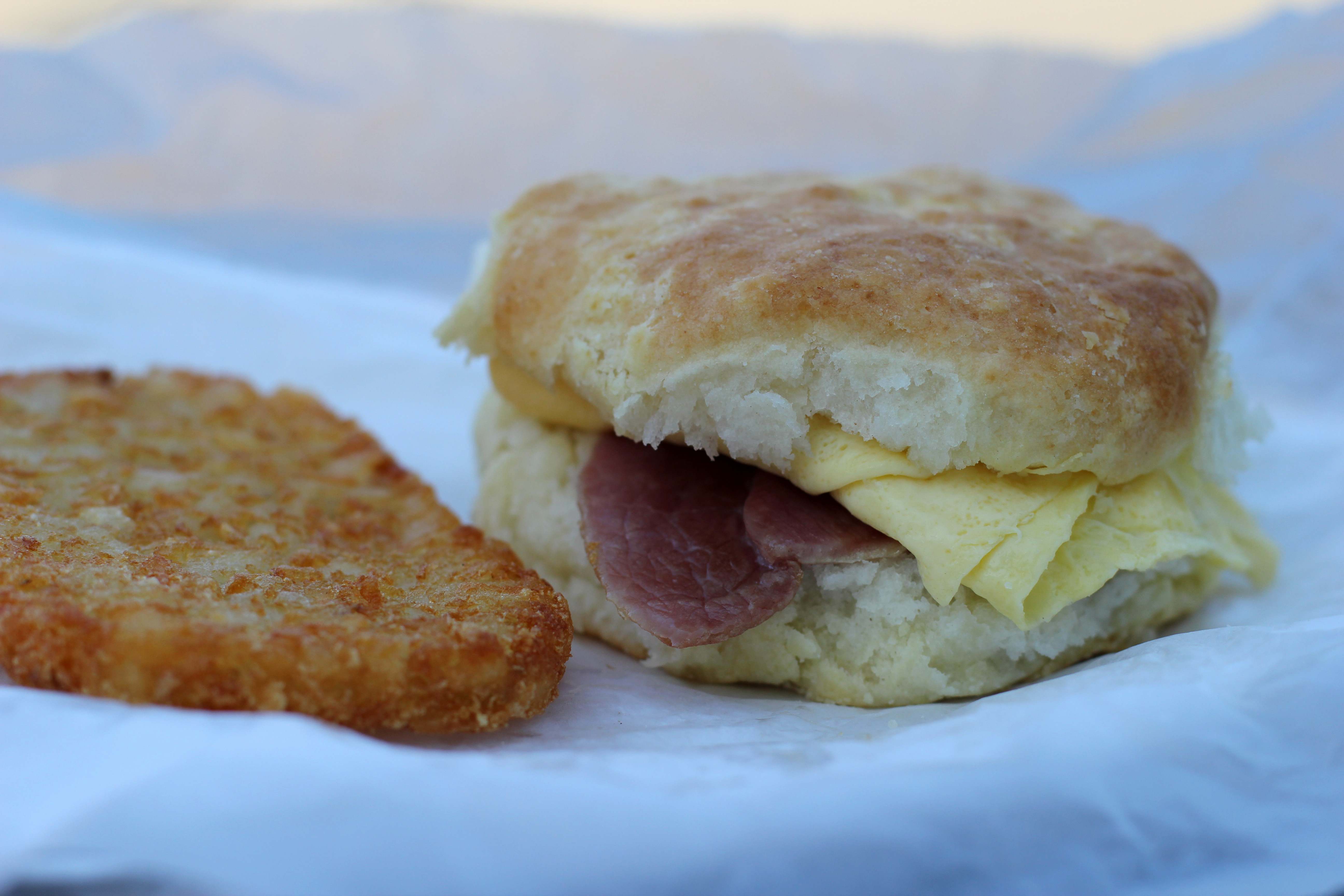 breakfast biscuit | sunrise biscuit kitchen, chapel hill, nc ...