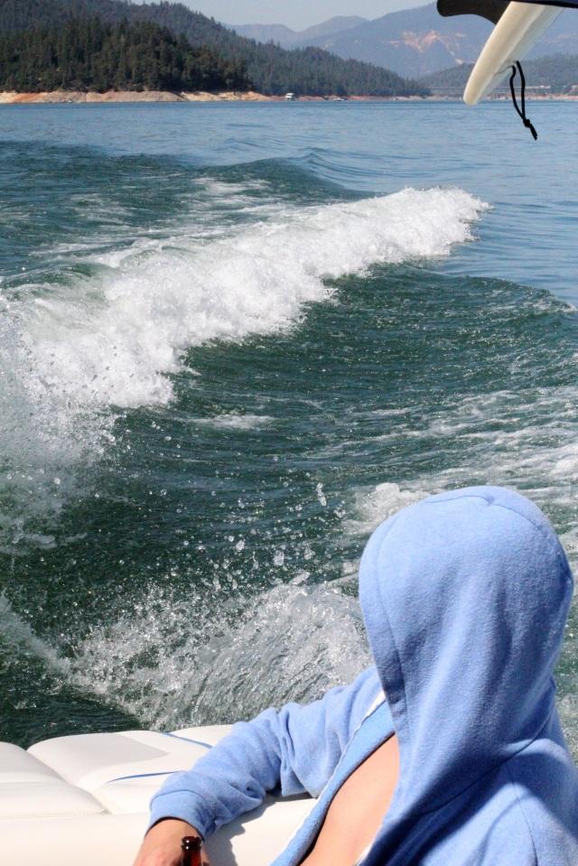 cruising shasta lake