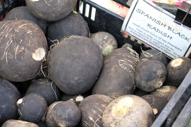 san francisco ferry building farmer's market black radish