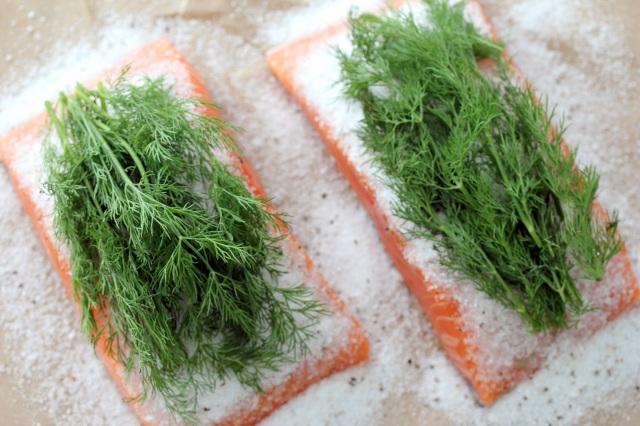 salmon dill gravlax