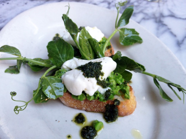 smashed english peas toast burrata mint pesto gjelina venice
